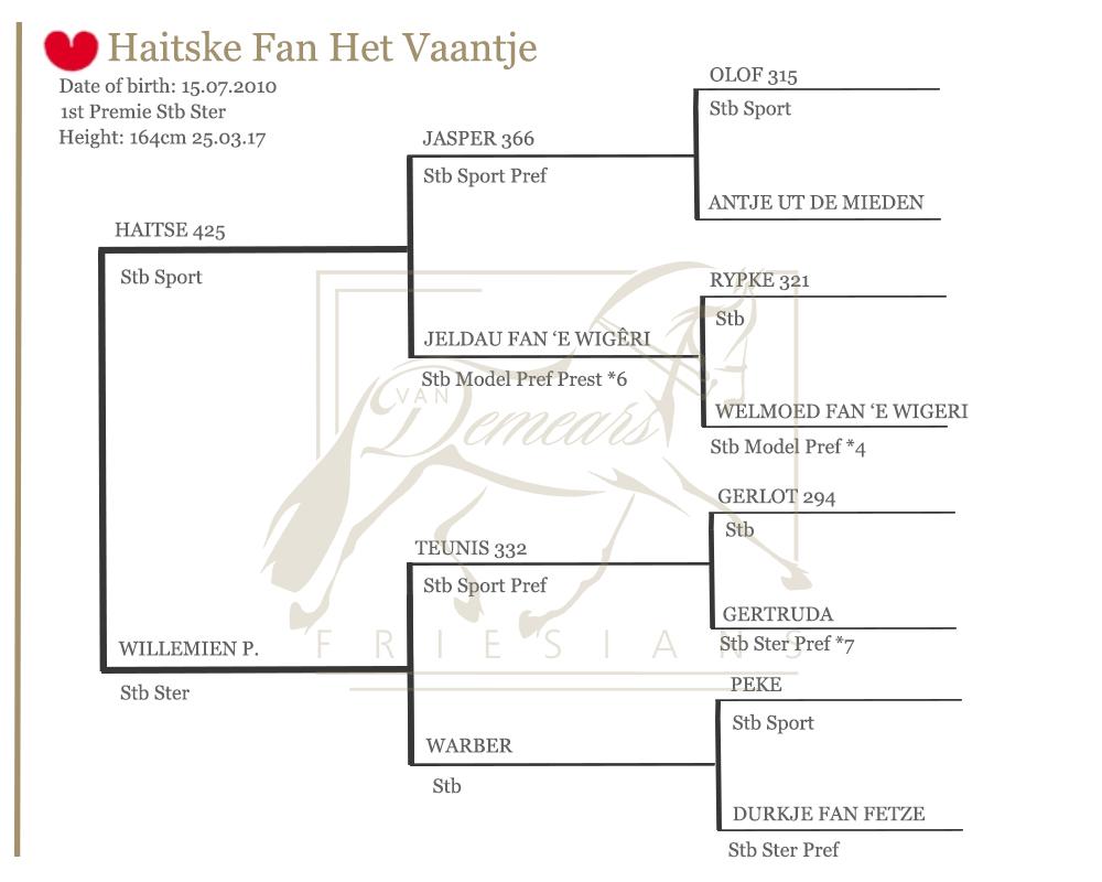 Haitske Lineage Graph   Van Demears Friesians Tamborine QLD Horse Stud